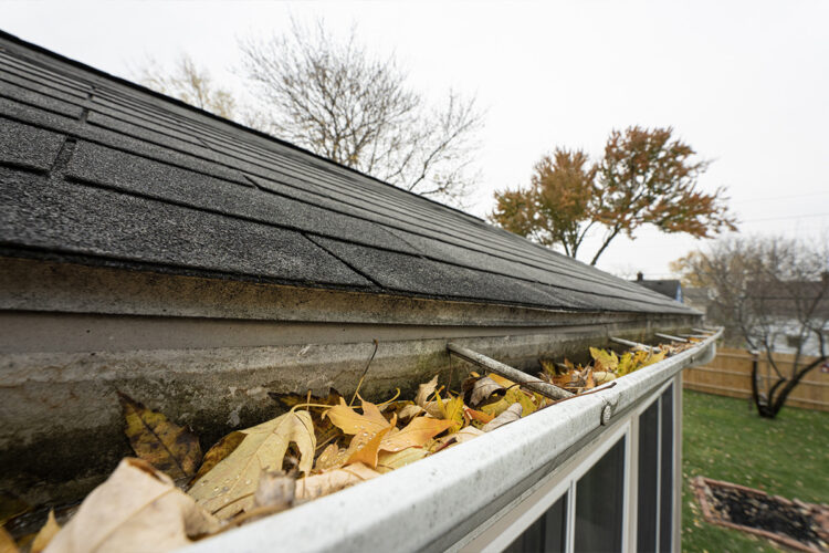 WNY Roof, WNY company, roof maintenance, roof repair, gutter cleaning, siding